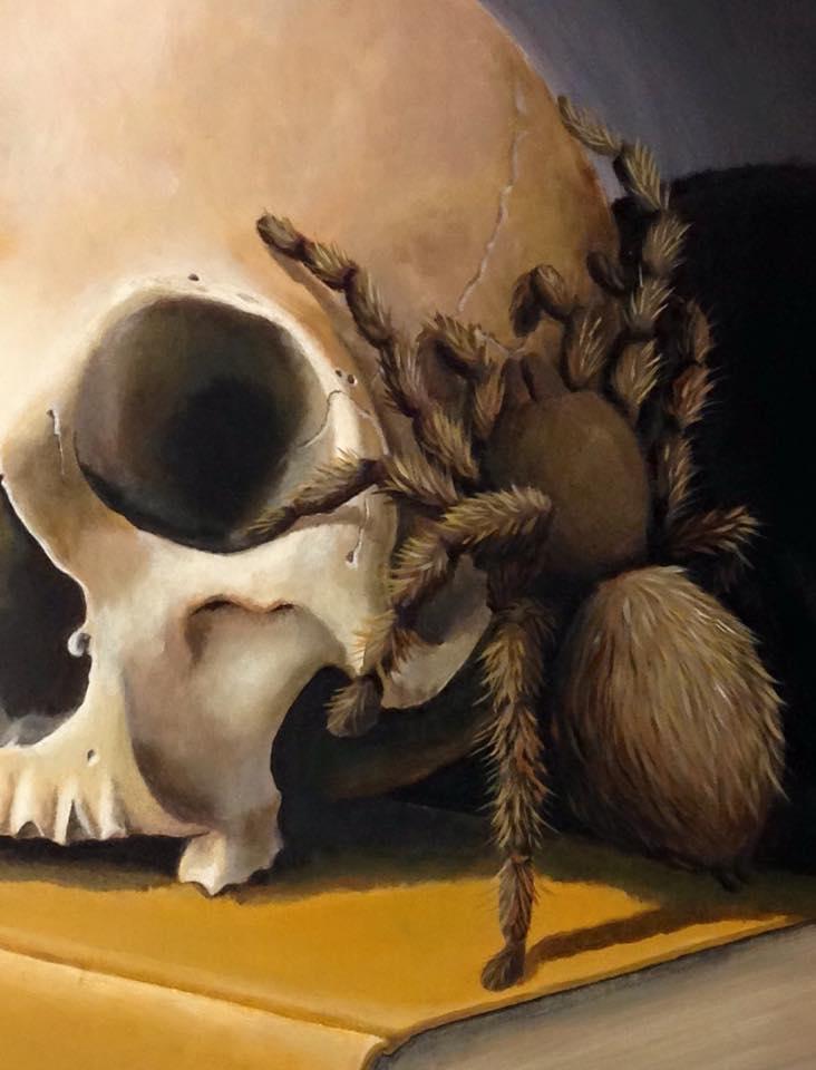 stefano-gentile-spider-tarantula-cambogia-skull-art-pop
