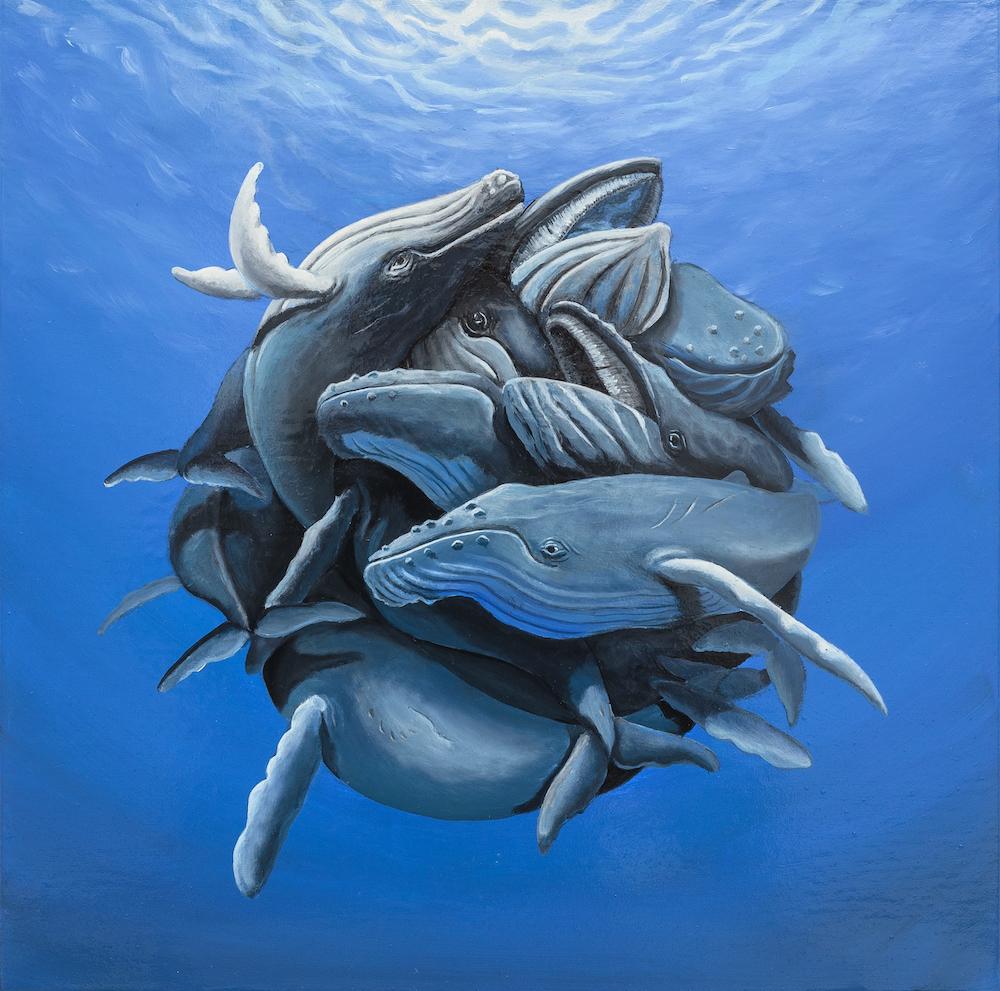 stefano-gentile-art-pop-whale-balene-megattere