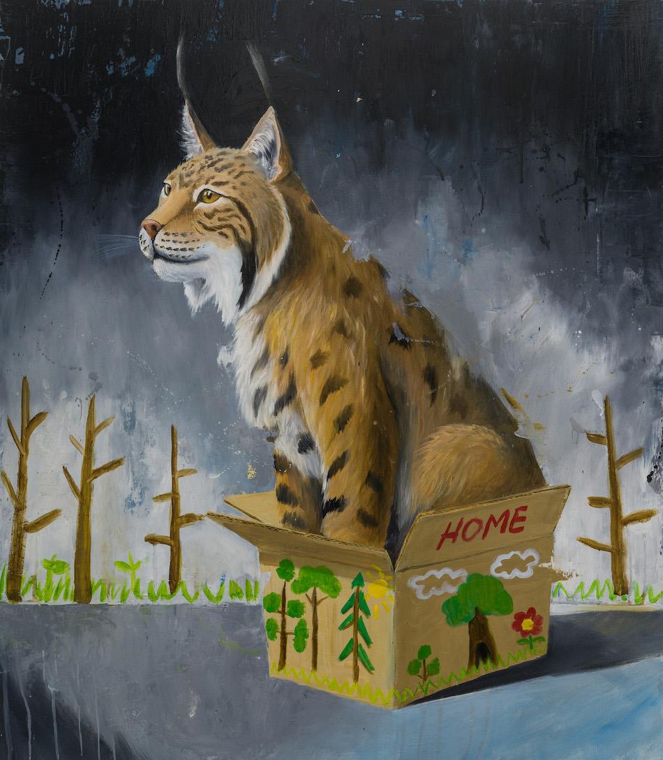 Schrodinger's cat-lynx-lince-stefano-gentile-art-pop